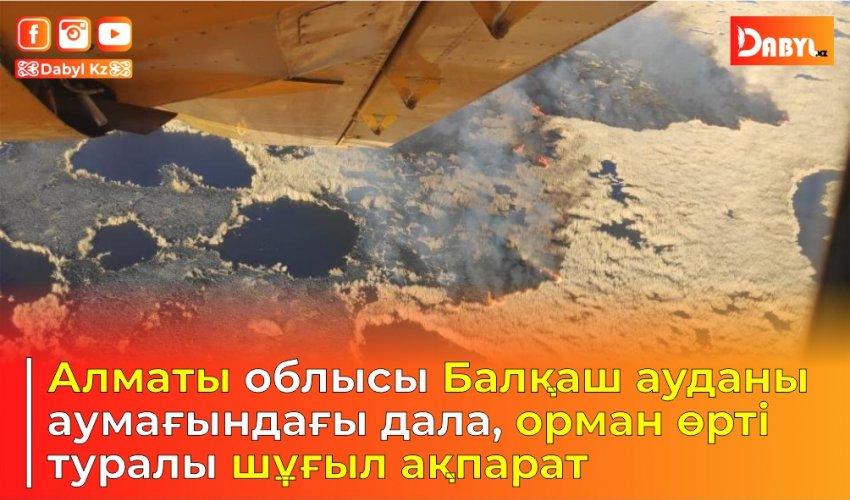 Алматы облысы Балқаш ауданы аумағындағы дала, орман өрті туралы шұғыл ақпарат
